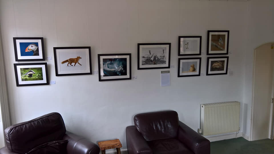 It's official...my exhibition is up at t...