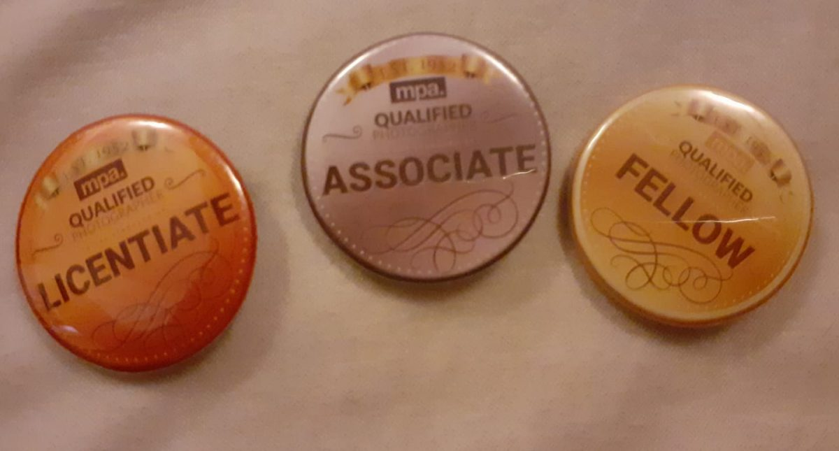 My wonderful MPA Qualified badges...Lice...