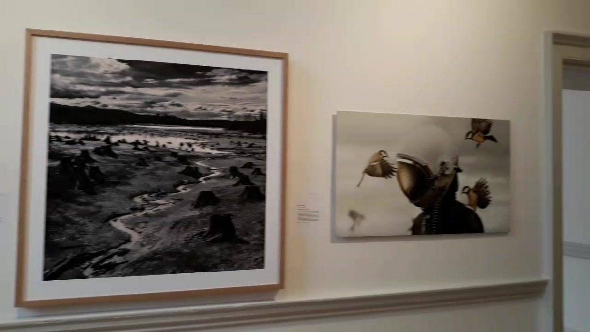 The Sony World Photography awards exhibi...